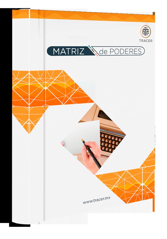 Manual de Matriz de Poderes para Tu Empresa