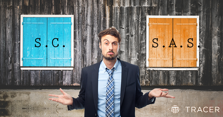 10 factores para decidir cuándo es mejor una Sociedad Civil y cuándo una S.A.S.